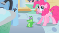 Pinkie Pie places Gummy on the floor S1E15.png