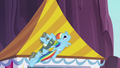 Rainbow and Wind Rider flying together S5E15.png