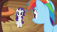 Rarity 'don't you mean 'inside an enigma'' S4E18