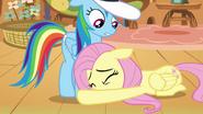 S02E22 Przestraszona Fluttershy u kopyt Rainbow
