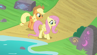 AJ and Fluttershy look for foal's-breath S8E23