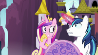 Cadance pleasantly surprised; Shining Armor shocked S7E22