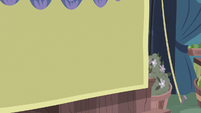 Curtain drawn in front of Daisy's stand S8E18