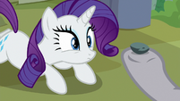 Maud Pie holding Boulder up to Rarity S8E4