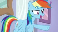 "Rainbow Dash ""don't worry, Twilight!"" S8E17"