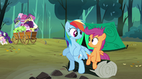 Rainbow Dash 'Get along just fine' S3E6