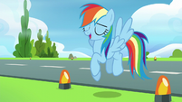 Rainbow Dash --right, no problem!-- S6E7