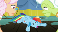 Rainbow Dash falls over in despair S8E5