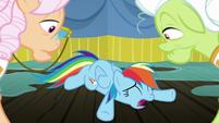 Rainbow Dash falls over in despair S8E5