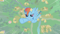 Rainbow Dash flying upward S1E06