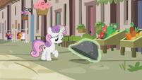 Sweetie Belle looks for Big Mac under a rock S7E8