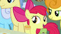 "Apple Bloom ""you must be new"" S7E13.png"