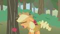 Applejack hitting her head S1E4.png