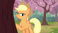 Applejack still S2E14