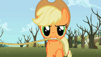 Applejack with rope S2E10
