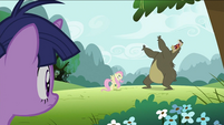 Bear about to roar on Fluttershy S2E03