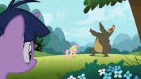 Bear about to roar on Fluttershy S2E03