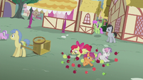 Crusaders tripping over apples S5E18