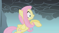 Fluttershy falling after looking down S1E07.png