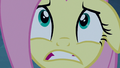 Fluttershy looking very scared S6E15.png