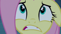 Fluttershy looking very scared S6E15
