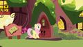 Fluttershy rejected by Twilight S1E1.png