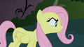 Fluttershy talks to the Cockatrice S1E17.png