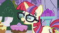 Moon Dancer asks if Twilight is coming S5E12.png