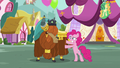 Pinkie rubbing Rutherford S5E11.png