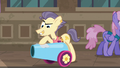 Pouch Pony polishing his party cannon S6E3.png