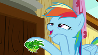"Rainbow Dash ""too egotistical"" S8E20"