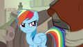 Rainbow Dash tearfully glares at Dr. Caballeron S7E18.png