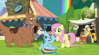 Rainbow next to Fluttershy and orthros S4E22
