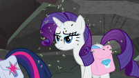 Rarity walks through a swarm of flies S8E25