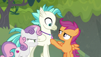 "Scootaloo ""not to mention more you!"" S8E6"