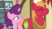 Sugar Belle pleading with Big Mac S8E10