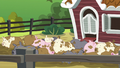Applejack's pigs in the pigpen S6E10.png
