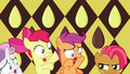 Babs Seed and CMC S03E04.png