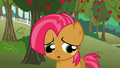 Babs apologizes to the CMC S3E04.png