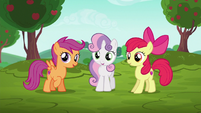 Cutie Mark Crusaders hear Cheerilee's announcment S6E14