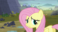 Fluttershy --oh, you poor things!-- S5E23