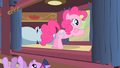 Pinkie Pie looking outside the window at buffalo S1E21.png
