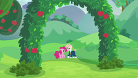 Pinkie and Svengallop in an apple grove S5E24