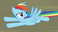 "Rainbow Dash ""how do you get rid of them?!"" S9E21"