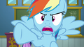 "Rainbow Dash ""who said that?!"" S6E24.png"