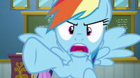"Rainbow Dash ""who said that?!"" S6E24"
