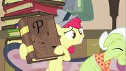 S02E23 Apple Bloom pokazuje babci książkę