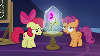 "Scootaloo ""how she organizes her books"" S9E22"