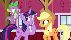 Twilight recalls her favorite Applejack memories MLPCS5