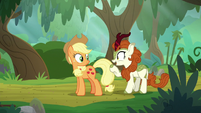 Autumn Blaze -which you should do- S8E23